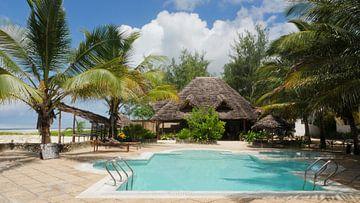 Zwembad met palmbomen en bamboo hut op tropisch eiland van Robin Jongerden