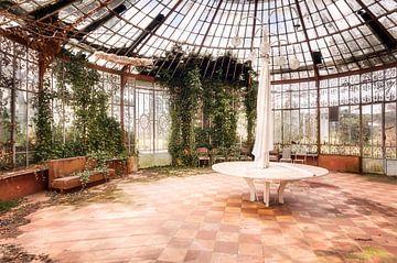 Greenhouse abandonnée. sur Roman Robroek