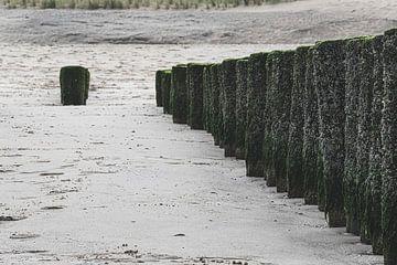 Strandpalen op een rijtje van