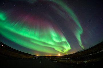 Dansend noorderlicht boven IJsland van Leo Schindzielorz
