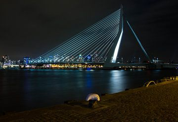 Erasmusbrug Rotterdam in de avond von Esther van Lottum-Heringa