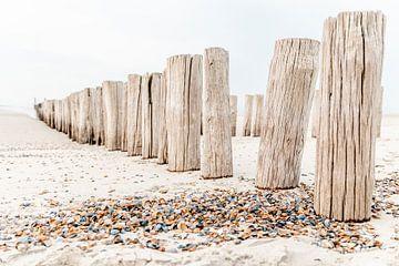 Pfähle und Muscheln am Strand in Domburg von Dana Schoenmaker