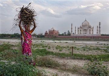 Taj Mahal von Marcel van Balken