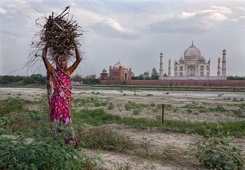 Taj Mahal van Marcel van Balken