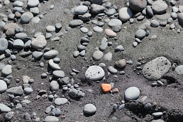 Sei ein orangefarbener Stein an einem schwarzen Strand von Yoanique Essink