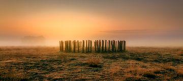 Grafheuvel in de mist. van Boris Van Berkel