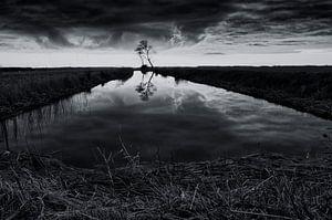 Tussen meer en bos (2) van Remco de Vries