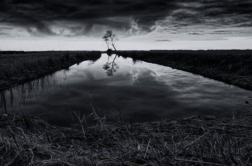 Tussen meer en bos (2) von Remco de Vries