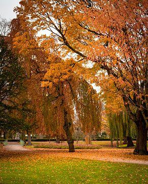 Julianapark, Schiedam von Dogac Akdag
