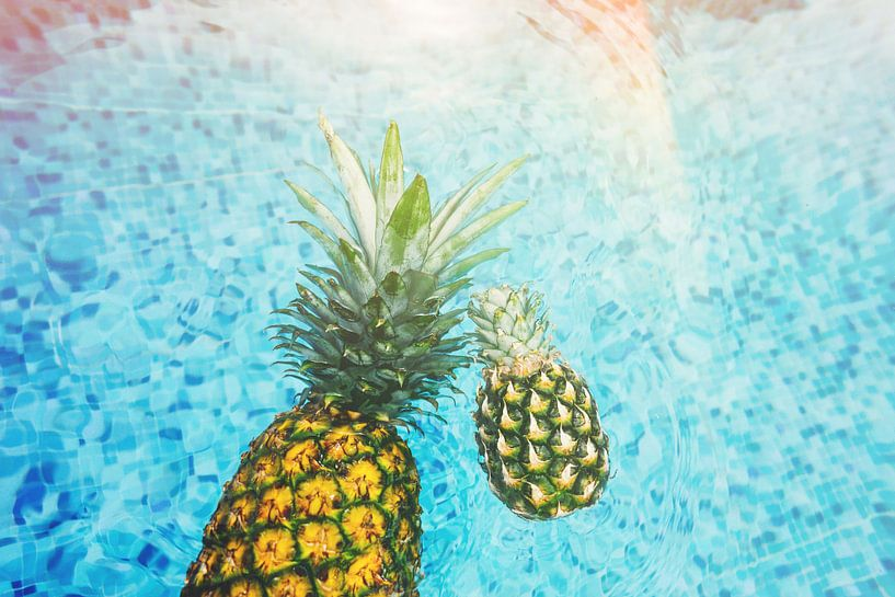 ananas in zwembad van Fela de Wit