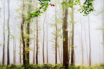 Sommerwald von Lars van de Goor