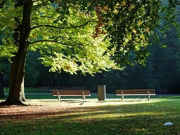Park van Marc den Hoed