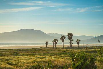Strandleben von Robert de Boer