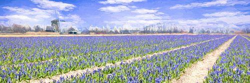 landschap met bloeiende Hyacinten van
