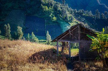Oude schuur Bromo (Indonesië) van Joris Pannemans - Loris Photography