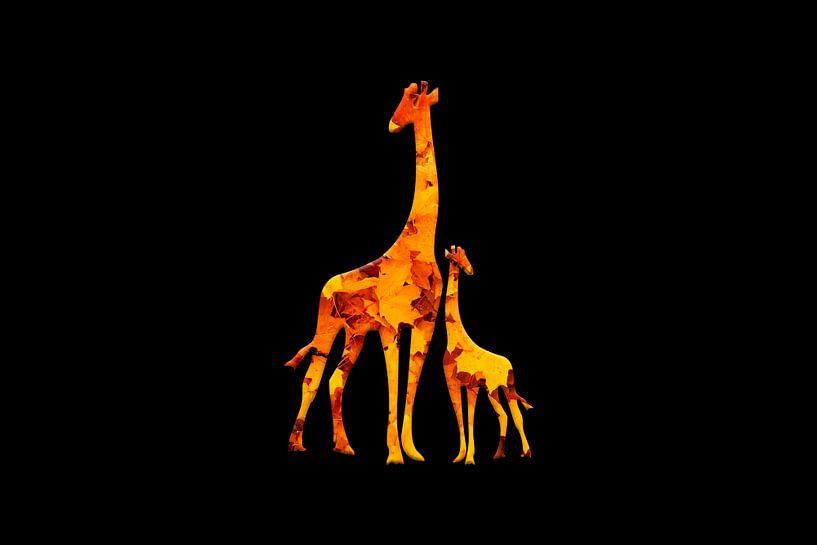 Giraffe2 von Catherine Fortin