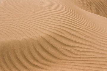 Zandduin in de Karakum woestijn van Photolovers Reisfotografie