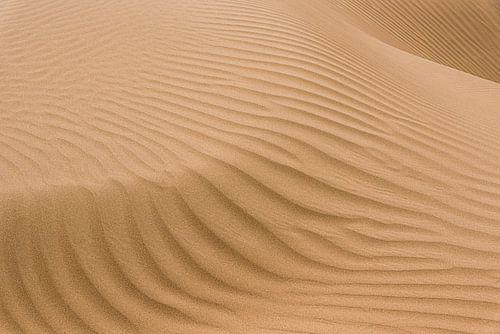 Lijnen en schaduw van een zandduin in de Karakum woestijn | Turkmenistan