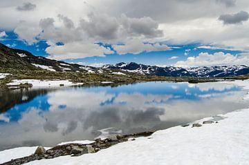 Spiegeling in smeltwater - Noorwegen van Ricardo Bouman