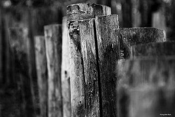 Holzzaun von Wendy Van Wuytswinkel