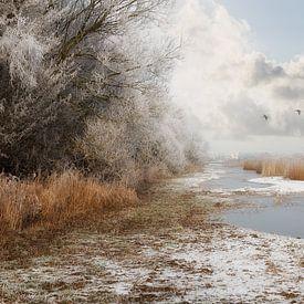 Sneeuw, mist en ijzel van Truus Nijland
