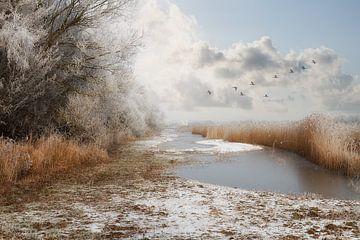 Sneeuw, mist en ijzel