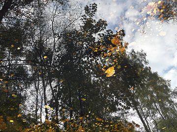water reflectie in een plas van