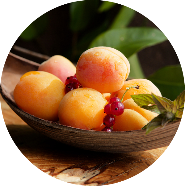 Verse abrikozen stilleven van Tanja Riedel