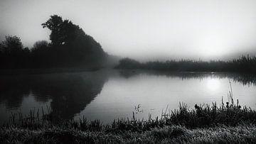 Wasserlandschaft von Dianthe Forkink