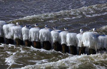 Baltische Zee van Thomas Jäger