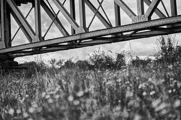 Eisenbahnbrücke (schwarz-weiß) von Luis Henrique