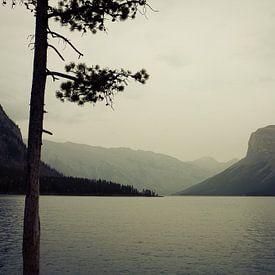 Meer Minnewanka: Canada van Jasper van der Meij