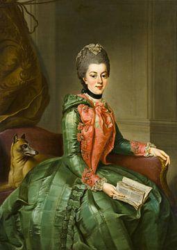 Portret van prinses Frederika Sophia Wilhelmina Sophia Wilhelmina, Johann Georg Ziesenis. van Meesterlijcke Meesters
