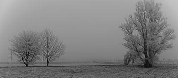 stilte in de rijp van Peter Valentijn