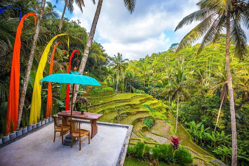 Bali van Michel van Rossum
