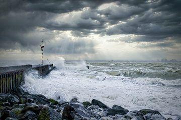 Storm van Evert Jan Looise