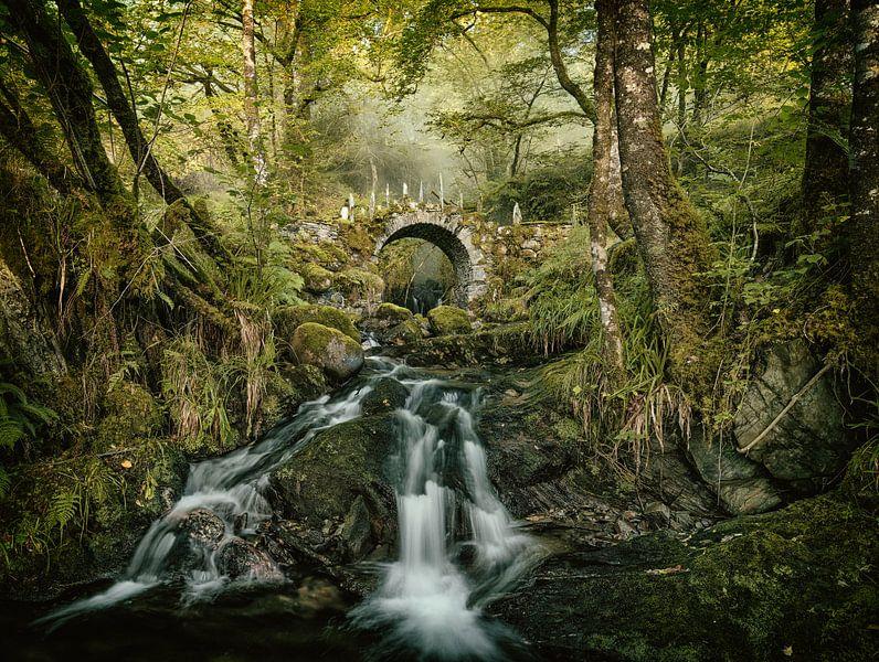 Le Pont des Elfes sur Lars van de Goor