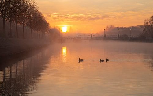 Gouden zonsopkomt boven de Leie aan de sluizen in Menen - Belgie