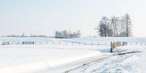 Fluwelen Sneeuwlandschap in Zuid-Holland