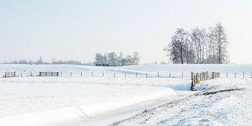 Fluwelen Sneeuwlandschap in Zuid-Holland von Rob IJsselstein