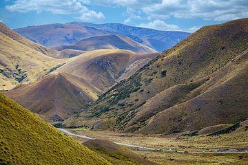 Lindis Pass, Pass in Otago, Neuseeland von Rietje Bulthuis
