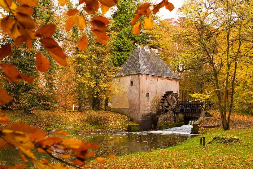 Herfst Watermolen van Ada Zyborowicz