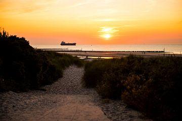 Het pad naar zonsondergang van Marian Roest