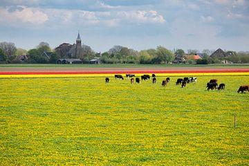 Lekker Hollands van Astrid Volten