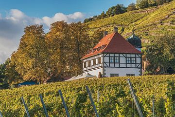 Castle Hofloessnitz, Radebeul van