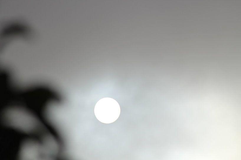 zon of maan met grijze gloed von milan willems