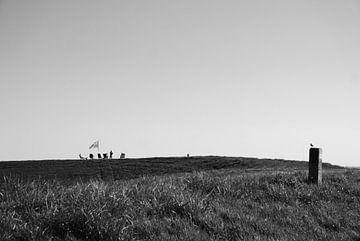 Zeitqualität - Zeeland von Maurice Weststrate