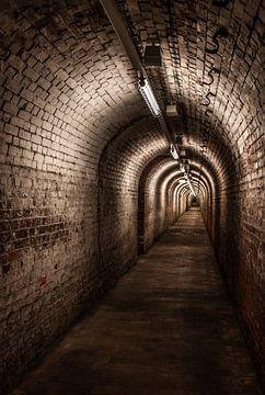 Underground sur Frank Quax