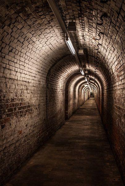 Underground van Frank Quax
