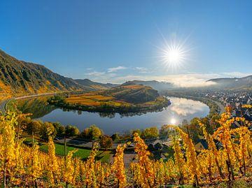 Uitzicht door de wijnbergen naar de Moezelbocht van Christian Klös